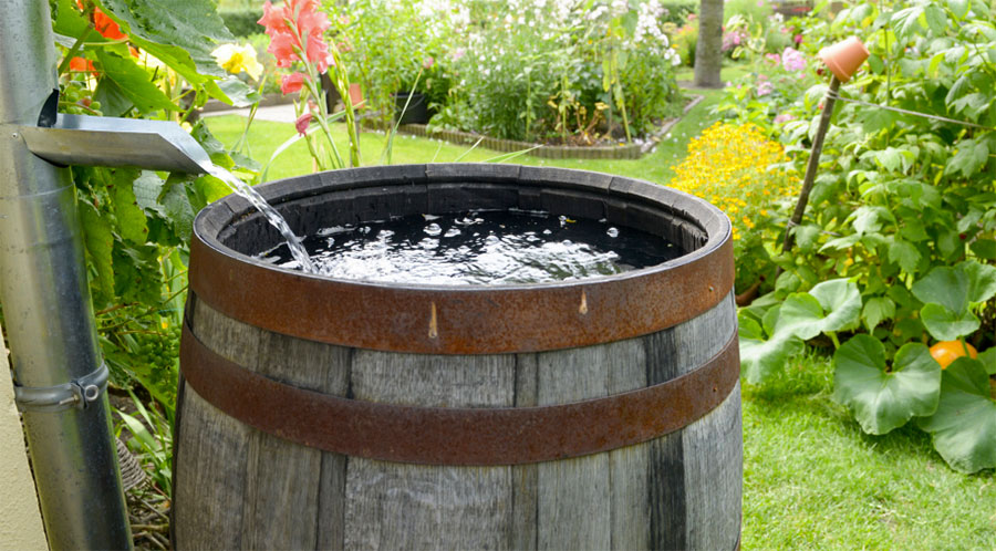 Rain barrel - Conserving Water tips, Conservation Sudbury